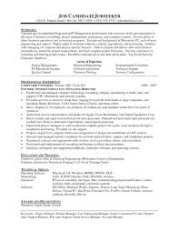 Manager Resume Example It Engineering 100 Long Consultant Template