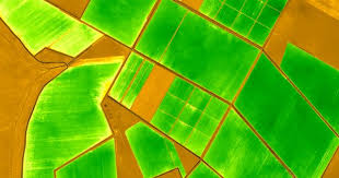 ndvi in agriculture agriculture farming and satellite imagery