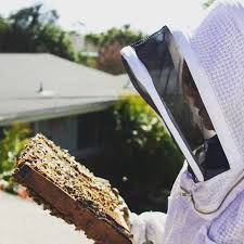 Beekeeping Like A Girl 10 MISTAKES NEW BEEKEEPERS MAKE Hive Time Products A Bee Adventure For Everyone Bkeeping Everything You Need To Know Start Your First Best 25 Raising Bees Ideas On Pinterest Honey Bee Keeping The Bees In Your Backyard Guide North Americas Joseph Starting Housing And Feeding Top Bar Beehive Projects Events Level1techs Forums 562 Best Images Knees 320 Like Girl 10 Mistakes New Bkeepers Make Splitting Hives Increase Cookeville Bkeepers Nucleus Colony Or How A 8 Steps With Pictures