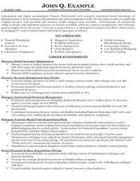 Core Competencies Resume Examples Competency In