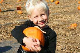 Best Pumpkin Patch Minneapolis by Fall Tradition Day At The Pumpkin Patch Borealis