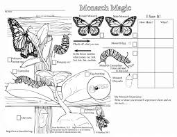 Explore Teacher Notes Monarch Butterfly And More Magic Coloring Page