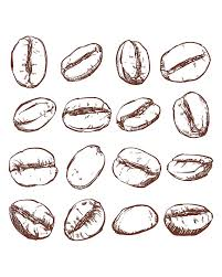 Coffee Isolated Hand Drawn Vector Off Sale Beans Clipart