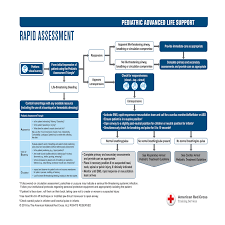 PALS Treatment Guidelines | Red Cross Store