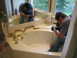 check for snakes in the gulp bathtub the deluded divathe