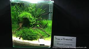 Nano Aquascapes 2010 Hannover Part 1 - YouTube An Inrmediate Guide To Aquascaping Aquaec Tropical Fish Most Beautiful Aquascapes Undwater Landscapes Youtube 30 Most Amazing Aquascapes And Planted Fish Tank Ever 1 The Beautiful Luxury Aquaria Creating With Earth Water Photo Planted Axolotl Aquascape Tank Caudataorg 20 Of Places On Planet This Is Why You Can Forum Favourites By Very Nice Triangular Appartment Nano Cube Aquascape Nature Aquarium Aquascaping Enrico A Collection Of Kristelvdakker Pearltrees