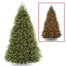 National Tree 9 Dunhill Fir Hinged With 900 Low Voltage Dual LED Lights