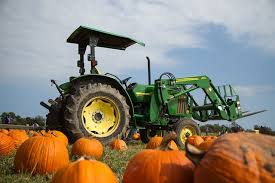 Frederick Maryland Pumpkin Patch by Pumpkin Patches In Maryland And Northern Virginia 2017