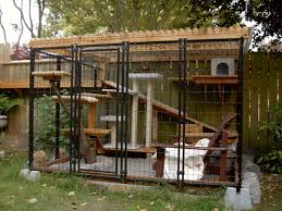 cats on deck catios iz the new backyard feature that you ll absolutely