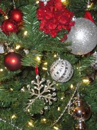 What Is The Best Christmas Tree Food by What Is The Best Christmas Tree To Buy Christmas Lights Decoration