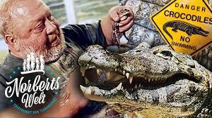 vom krokodil gefressen norbert zajac zoo zajac