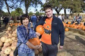 Carmichaels Pumpkin Patch Oklahoma by Pumpkin Patch Yogisden Us