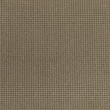Chenille Carpet by Chenille Check Assam Bloomsburg Carpet