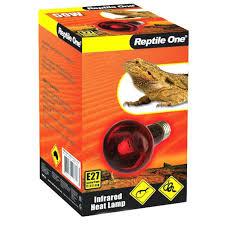 Reptile Heat Lamps Uk by Heat Lamps Reptiles Lizard Lamp Led For U2013 Keepupdated Co