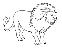 Outline Pictures Of Animals For Colouring