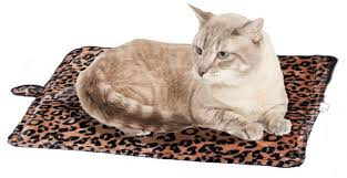 Kh Thermo Kitty Heated Cat Bed by Best Cat Beds Reviews U0026 Ultimate Buying Guide You Should Read