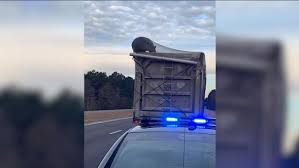 100 Trash Truck Videos For Kids Youtube Bear Caught On Camera Riding On Top Of Garbage Truck 6abccom