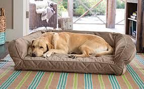 dog beds sale orvis