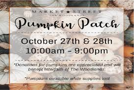 Pumpkin Patch Houston Tx Area by Market Street Pumpkin Patch Mommypoppins Things To Do In
