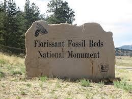 florissant fossil beds national monument colorado travel blog