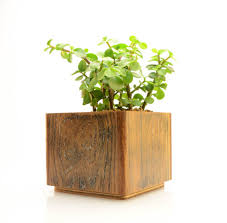 Modern Square Planter Rustic Wood Indoor Flower Pot