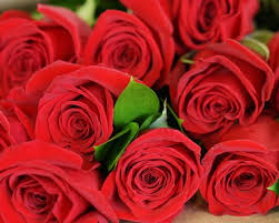 Tile Center Inc Washington Road Augusta Ga by Martina U0027s Flowers And Gifts Florist Of Augusta U0026 Evans Ga