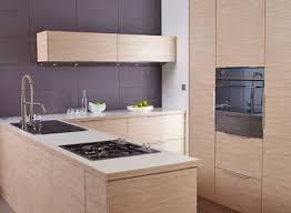 fa de de cuisine pas cher facade meuble cuisine bois brut de leroy merlin newsindo co