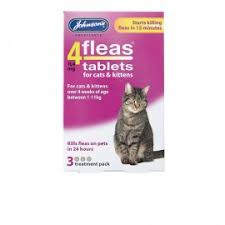 flea treatment for cats cat flea treatment