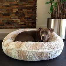 Tempur Pedic Dog Beds by Comfy Couch Pet Bed Frontgate