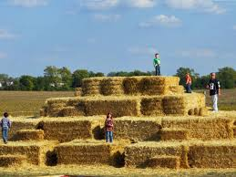 Pumpkin Patch Fort Wayne 2015 by Four Reasons To