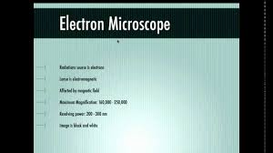 Difference between electron and light microscope