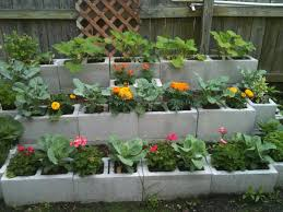 Outdoor Garden With Wooden Fences And Concrete Cinder Blocks