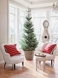 A Slim Christmas Tree Housed In Basket