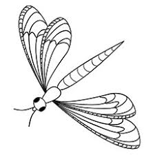 Fresh Dragonfly Coloring Pages Cool Gallery Co 5612