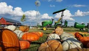 Flower Mound Pumpkin Patch Flower Mound Tx by 5 Pumpkin Patches In Dfw To Visit This Fall Her Campus