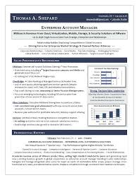Sample Resume Sales Executive Bank Feat Best Writer Award Winning By