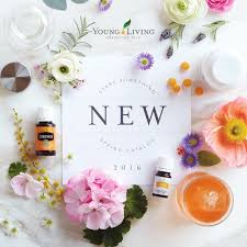 6th Edition Essential Oils Desk Reference Online by Spring Catalog 2016 V1 Young Living Living Essentials And Oil