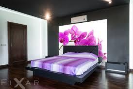 schläfrig amarantrote orchidee fototapeten orchidee