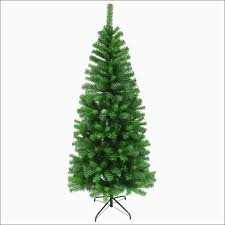 Christmas Trees Types by Christmas Christmas Tree Types Unique Delightful Ideas Fir