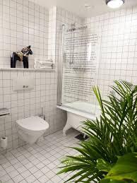 Best Bathroom Pot Plants by 9 Best Rated Model Bathroom Designs Ewdinteriors