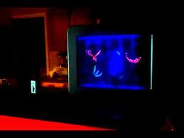 fake jelly fish tank looks real youtube