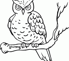 Coloring Pages Of Owls Free Printable Owl For Kids Images