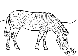 Zebra Coloring Page To Printprintablecoloring Pages