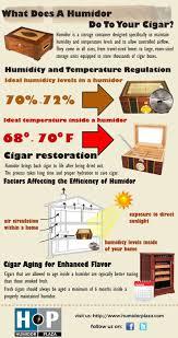 cigar cabinet humidor australia 61 best cigar humidors images on cigar humidor cigars