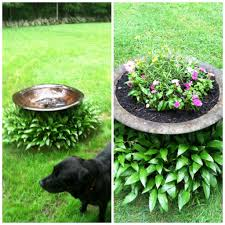 Decorative Outdoor Well Pump Covers by How To Cover Unsightly Septic Tank Covers Landscape Inspiration