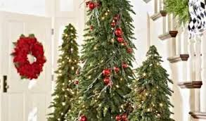 Tall Thin Christmas Tree Download By SizeHandphone