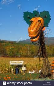 Pumpkin Patch Corn Maze Snohomish Wa by Corn Maze Usa Stock Photos U0026 Corn Maze Usa Stock Images Alamy
