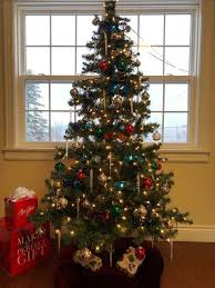 Christmas Tree Cataract Seen In by Dr Jolene Decoste Family Eye Care Home Facebook
