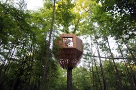100 Tree House Studio Wood Geometric Treehouse Packs Unexpected Treetop Luxury