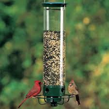 Hanging Backyard Bird Feeder - Decorate Your Backyard With Bird ... Some Ways To Keep Our Backyard Birds Healthy Birds In The These Upcycled Diy Bird Feeders Are Perfect Addition Your Two American Goldfinches Perch On A Bird Feeder Eating Top 10 Backyard Feeding Mistakes Feeder Young Blue Jay First Time Youtube With Stock Photo Image 15090788 Birdfeeding 101 Lover 6 Tips For Heritage Farm Gardenlong Food Haing From A Tree Gallery13 At Chickadee Gardens Visitors North Andover Ma